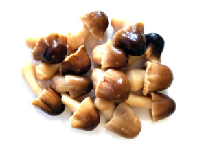 Distribuzione e Vendita di Funghi - Ma.Pr.I.Com. S.p.a.